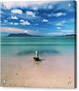 Raspins Beach In Orford On The East Coast Of Tasmania. Acrylic Print
