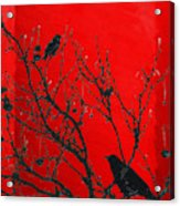Raven - Black Over Red Acrylic Print