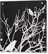 Raven - White Over Black Acrylic Print