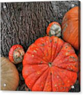 Red Orange Acrylic Print