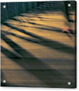 Red Shoe Acrylic Print