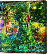 Redbird Singing Songs Of Love In The Tree Of Hope Acrylic Print