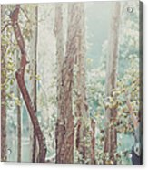 Relaxing  In Nature By Stretching And Acrylic Print