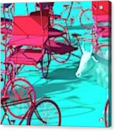 Rickshaws and Cow Acrylic Print