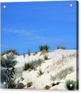 Rippled Sand Dunes In White Sands National Monument, New Mexico - Newm500 00106 Acrylic Print