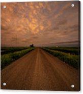 Road To Huron  Acrylic Print