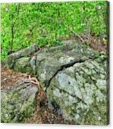 Rock On Green's Hill Acrylic Print