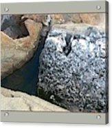 Rocks2 Acrylic Print