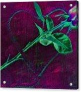 Roped Heart Acrylic Print
