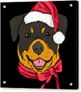 Rotweiler Xmas Hat Dog Pet Lover Christmas Acrylic Print