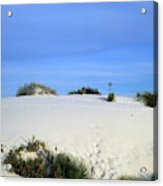 Rrippled Sand Dunes In White Sands National Monument, New Mexico - Newm500 00111 Acrylic Print
