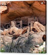 Ruins At Butler On The San Juan River  Acrylic Print