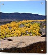Sandstone Above Golden River Desert Landscape Acrylic Print