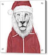 Santa Lion  Acrylic Print