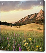 Scenic View Of Meadow And Mountains Acrylic Print