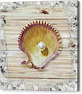 Sea Shell Beach House Rustic Chic Decor IIi Acrylic Print