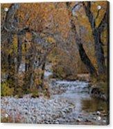 Serene Stream In Autumn Acrylic Print