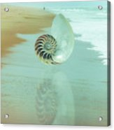 Shell Reflections In The Sand In The Soft Dawn Acrylic Print