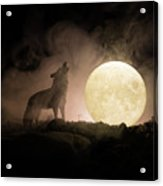 Silhouette Of Howling Wolf Against Dark Acrylic Print
