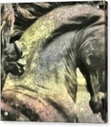 Silver And Gold  Art Acrylic Print