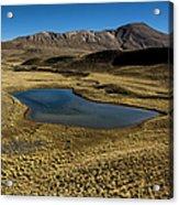 Small Lagoon In Condoriri National Park Acrylic Print