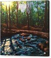 Smoky Mountain Stream Acrylic Print