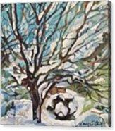 Snow Covered Cherry Tree Acrylic Print