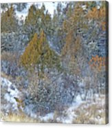 Snow-dusted In West Dakota Acrylic Print