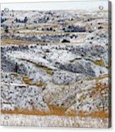 Snowy Dakota Acrylic Print
