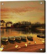 Soft And Warm Acrylic Print