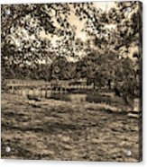 Solitude In Black And White With Sepia Tones Acrylic Print
