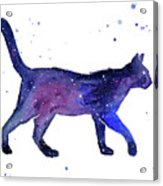 Space Cat Acrylic Print