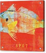 Spot Acrylic Print