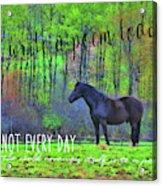 Spring Pasture Quote Acrylic Print