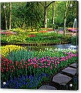 Springtime Keukenhof Gardens With Acrylic Print