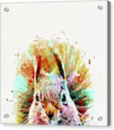 Squirrel Painting Acrylic Print
