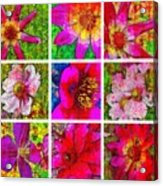 Stained Glass Pink Flower Collage  Acrylic Print