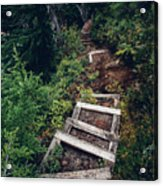 Stairs Lead Down Through The Forest Acrylic Print
