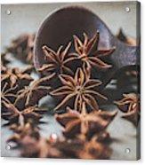 Star Anise 4825 By Tl Wilson Photography  Acrylic Print