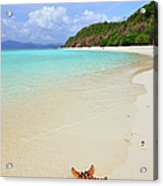 Starfish On Beach Sand Acrylic Print