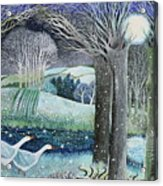 Starry River Acrylic Print