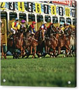 Start Of Horse Race, Sydney, New South Acrylic Print