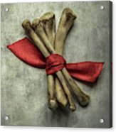 Still Life With Bones And Red Ribbon Acrylic Print