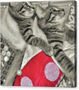 Stocking Stuffers Acrylic Print