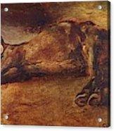 Study For Dead Horse Acrylic Print