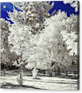 Summer Park In Infrared Acrylic Print