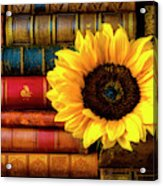 Sunflower In Stack Of Books Acrylic Print