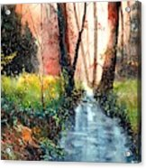Sunlight Colorful Path Acrylic Print