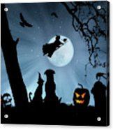 Super Cute Halloween Night With Dog And Cat Acrylic Print