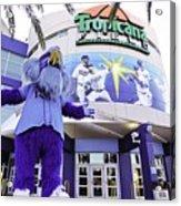 Tampa Bay Rays Mascot Acrylic Print